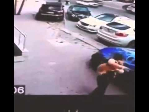 Psycho Street Cat Attacks Dog.. Owner Saves Dog From Cat Attack
