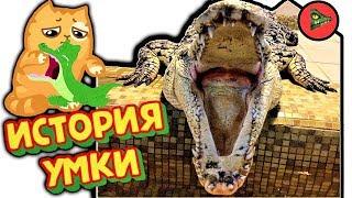 Не заводите крокодилов! ИСТОРИЯ КРОКОДИЛА УМКИ!