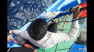 東部延繩釣漁法記錄(成漁壹號)