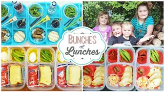 AMAZING Traveling Lunches 😎 Bunches of Lunches