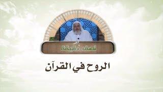 الروح في القرآن