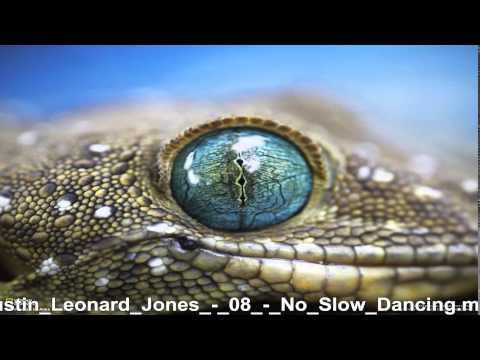 Austin Leonard Jones     No Slow Dancing