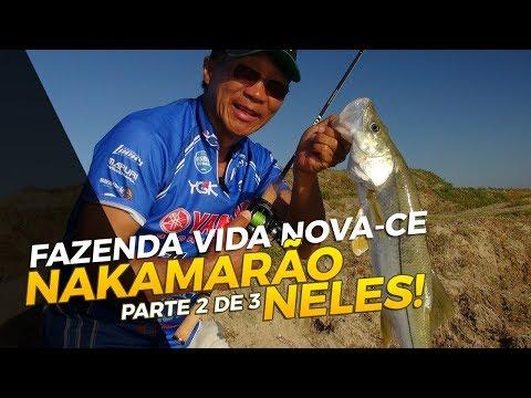 NAKAMARÃO NELES - FAZENDA VIDA NOVA - CE [PARTE 2 DE 3]