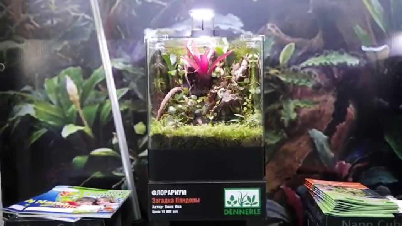 20 Dennerle Litres Florarium 0 5 Nano Led rWQdxCBoe