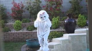 Easter Bunny caught hiding eggs in the backyard. Is he real?