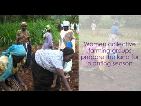Voices of Equality: Empowering Women through Sustainable Agriculture