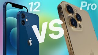 iPhone 12 vs 12 Pro Compared! Which Should You Buy?