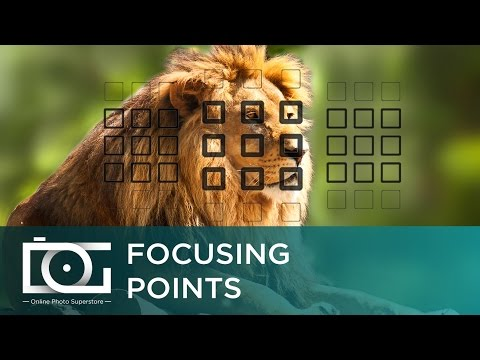CANON 80D EOS DSLR Camera  | Focusing Points TUTORIAL