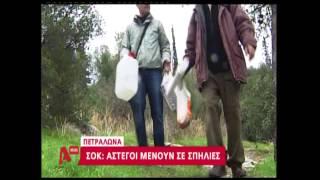 NewsIt.gr: Άστεγοι ζουν σε σπηλιές