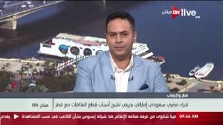 جيلان جبر: تحرك مصري خليجي لتوضيح أسباب قطع العلاقات مع قطر.. فيديو