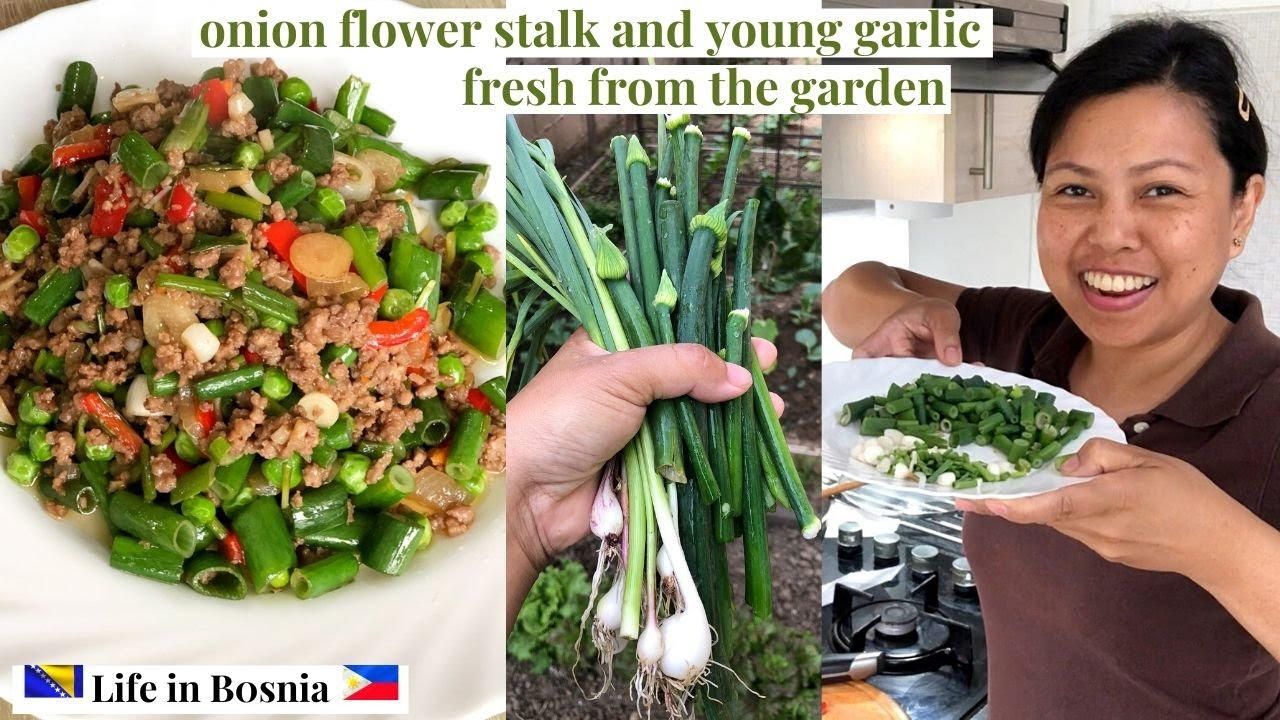 GARDEN TO TABLE | COOKING YOUNG GARLIC AND ONION FLOWER STALK FRESH FROM THE GARDEN | KUVANJE HRANE