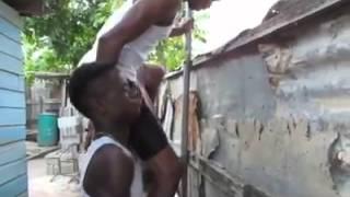 Mango Tree Thief