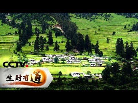 《生财有道》 20171128 西藏鲁朗:风情美食 生财忙 | CCTV财经