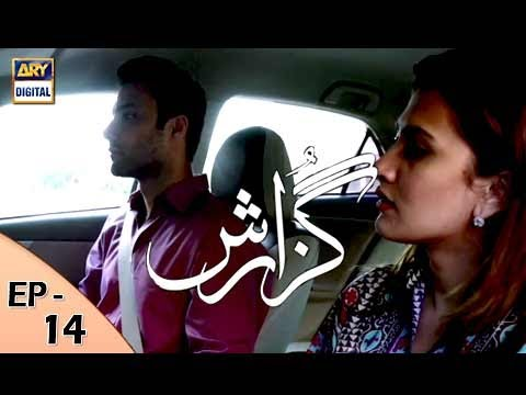 Guzarish Episode 14 - ARY Digital Drama