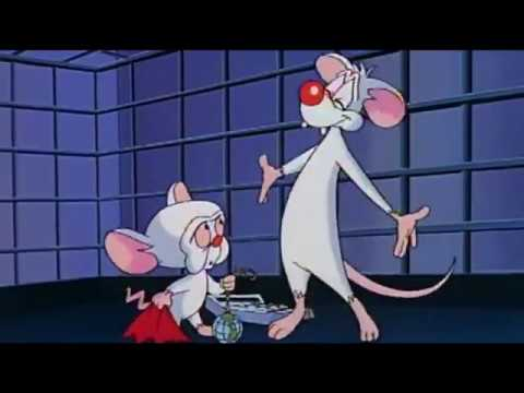 Pinky And The Brain Christmas Wish.Best Of Pinky And The Brain Christmas