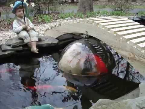 Home made koi dome youtube for Where can i buy fish