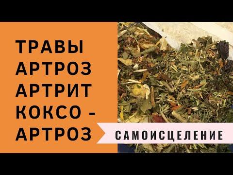 ТРАВЫ  АРТРОЗ КОКСОАРТРОЗ АРТРИТ