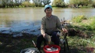 видео отдых на рыбалке в астрахани