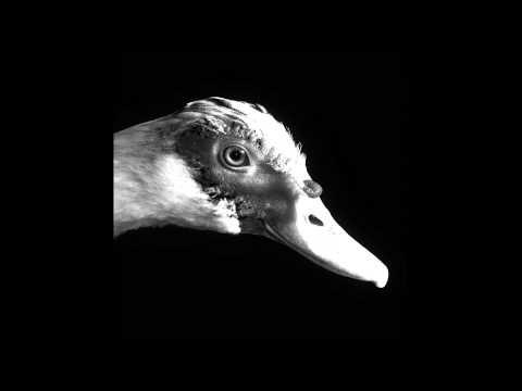 Be Svendsen  On The Hill MollonoBass & Ava Remix
