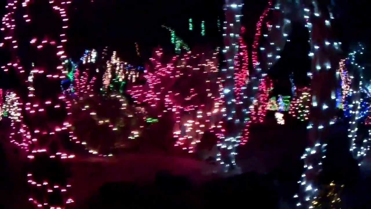 botanical cactus garden 500k leds tour at ethel m chocolate factory 11 12 13