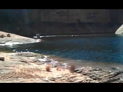 Y- Knot top speed run on Lake Powell