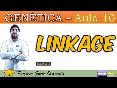Linkage (Genes Ligados) e Mapeamento de Cromossomos- Aulas de Genética (Parte 10 de 12)