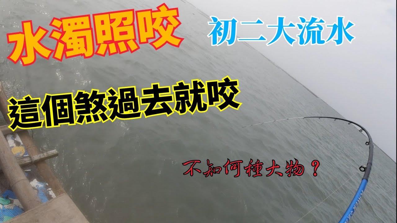 初二大流水,水濁依然會咬,堅持下去是對的~金湖螺釣