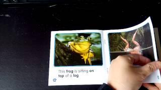 Animal Phonics Readers (Jodie 英文繪本故事屋錄製)