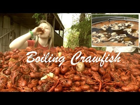 How To Boil And Eat Louisiana Crawfish