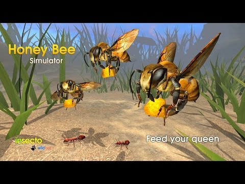 Honey Bee Simulator - By  Wild Foot Games - Role Playing - Google Play( Super HD Quality)