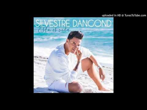 Silvestre Dangond La Embarraste Audio