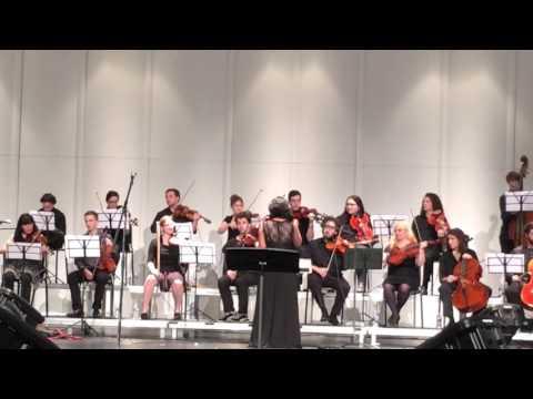 Violin concert - ilayaraaja's RajaParvai