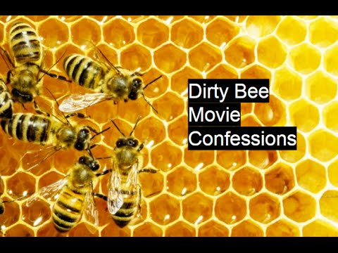 Dirty Bee Movie Confessions Simulator