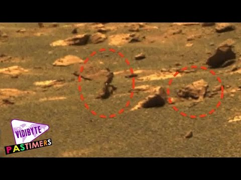 5 Images That Suggest Alien Life on Other Planets || Pastimers