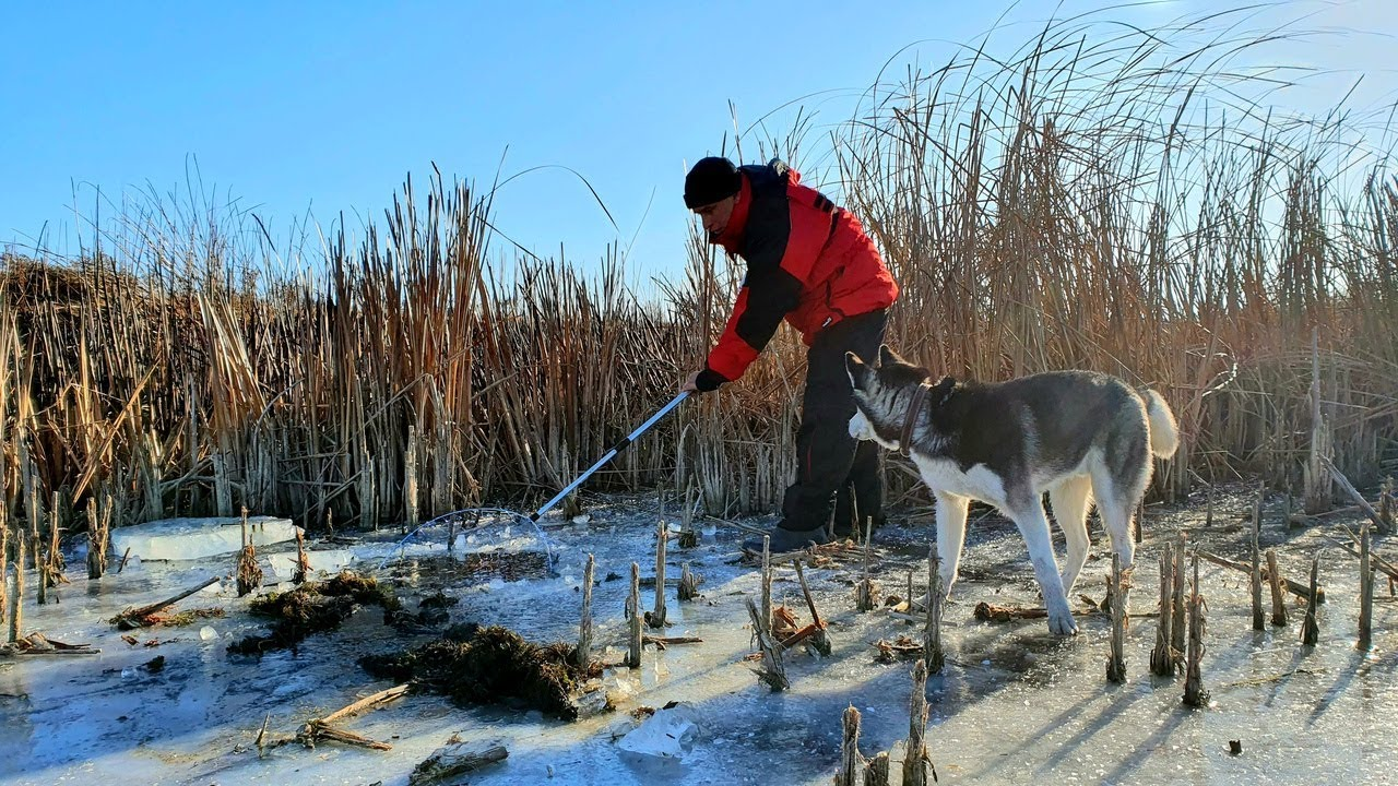 первый лед 2019-2020 зимняя рыбалка САЧКОМ ТУТ ТОННЫ РЫБЫ
