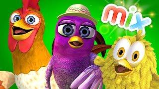 Download Птичка Гайта, Цыплёнок Пи и много других видео- детские песни | Детское Королевство Mp3 and Videos