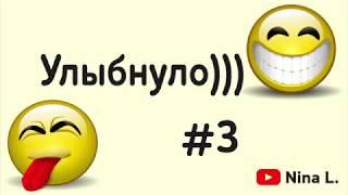 Юмор #3 Деревенские коты не верили... Прикол Улыбнуло)))