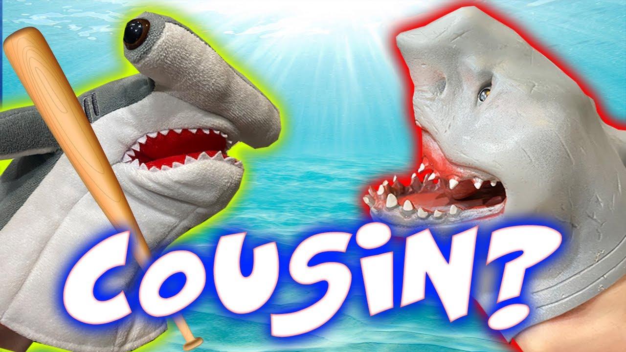 SHARK PUPPETS HAMMERHEAD COUSIN!!!!!