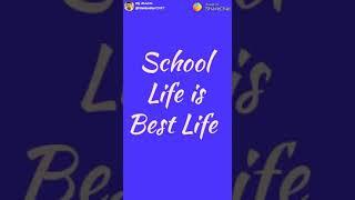 School life is best life