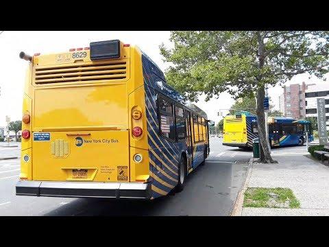 MTA: 2019 NovaBus LFS's [8628]/[8629]/[8632] Bx26/Bx28/Bx30 buses