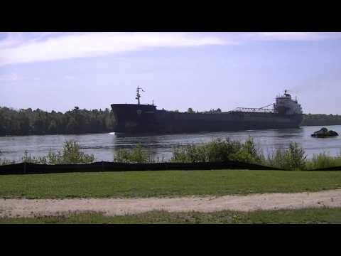 Algowood Self-Unloading Bulk Carrier Algoma Central Corp. 2014