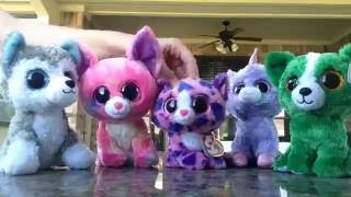'The Cup Song' Beanie Boo Music Video