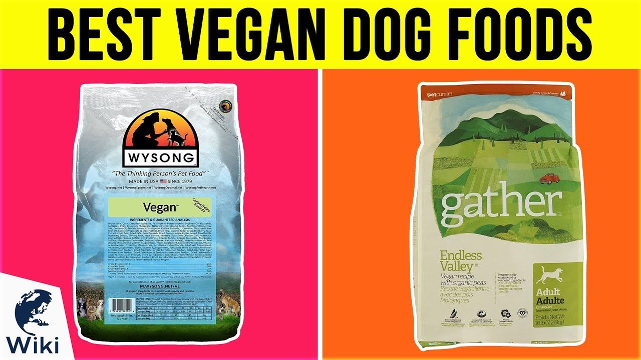 10 Best Vegan Dog Foods 2019