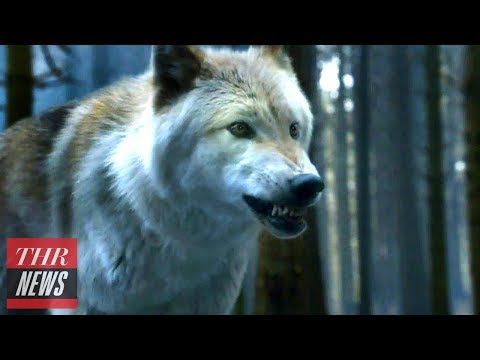 Peter Dinklage Asks 'Game of Thrones' Fans to Stop Buying Huskies | THR News