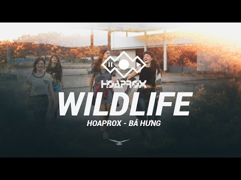 WILDLIFE (ORIGINAL MIX) - HOAPROX FT BÁ HƯNG - 1 HOUR REPLAY | HOAPROX OFFICIAL