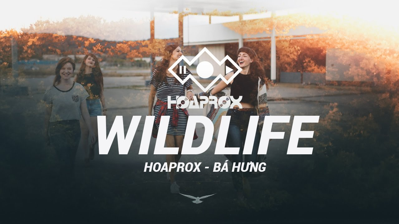WILDLIFE (ORIGINAL MIX) - HOAPROX FT BÁ HƯNG   1 HOUR REPLAY   HOAPROX OFFICIAL