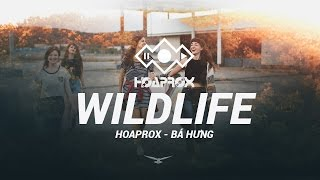 WILDLIFE (ORIGINAL MIX) - HOAPROX FT BÁ HƯNG | 1 HOUR REPLAY | HOAPROX OFFICIAL