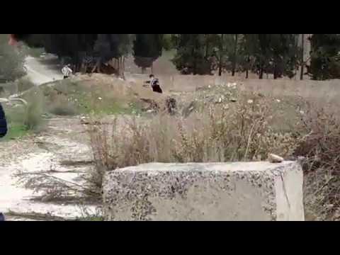 תיעוד בלעדי: פורעים ערבים מיידים אבנים על יהודים סמוך לכפר בורין