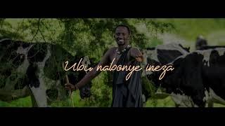 Ntamwami nkawe