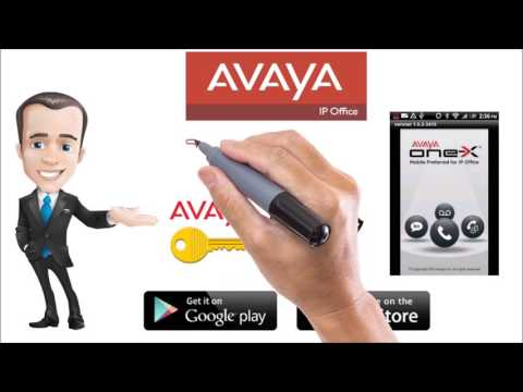 Avaya IP Phone System